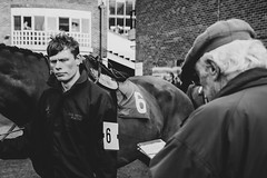 DSC_0816 (fullerton42) Tags: straftford racecourse stratfordracecourse horse horses racehorse horseracing race punter punters specatators sport equine england