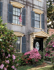 Springtime: 65 Rutledge Avenue (1830), Charleston, SC (Spencer Means) Tags: architecture house antebellum window door doorway shutters spring springtime flower azalea pink harlestonvillage charleston sc southcarolina rutledge avenue 65