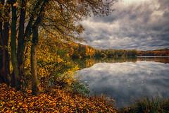 Autumn weather at the lake (radonracer) Tags: