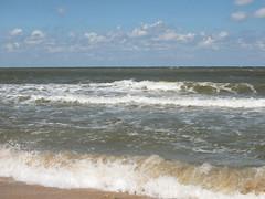 IMG_5772 (Бесплатный фотобанк) Tags: азовское море пляж россия краснодарскийкрай