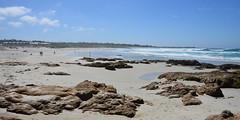 Rocky beach (afagen) Tags: california pacificgrove asilomarstatebeach montereypeninsula asilomar beach pacificocean ocean