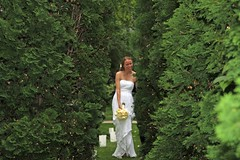 "The Bride and Groom • <a style=""font-size:0.8em;"" href=""http://www.flickr.com/photos/109120354@N07/31165676567/"" target=""_blank"">View on Flickr</a>"