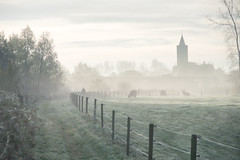 Kerk Giesbeek in de mist