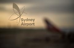 Airport dawn (OzzRod) Tags: pentax k1 smcpentaxfa50mmf14 airport window aeroplane plane qantas bokeh dawn sydney