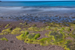 AB3I0035A (Aaron Lynton) Tags: lyntonproductions maui hawaii paradise drone andaz stouffers kihei aerial beach mauihawaii mauidrone mauibeachdrone reef mauiaerial mauiaerialbeach dji mavic mavicpro djimavic djimavicpro