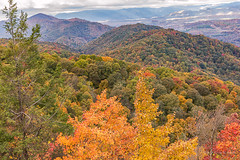 A View From Above (Back Road Photography (Kevin W. Jerrell)) Tags: autumncolors autumn autumnbeauty nikond7200 sigmalens backroadphotography mountains fall fallcolor
