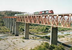 MEX51 8244 8242 501 (stevenjeremy25) Tags: ferromex fxe fnm mexico train railway railroad pacifico rs11 501 gp382m 8242 8244 caliente fuerte chp chihuahua
