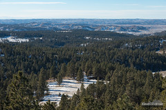 Above Custer National Forest (kevin-palmer) Tags: custernationalforest ashland montana december winter snow sunny blue sky nikond750 tamron2470mmf28 yagerbutte hills scenic view afternoon pine trees