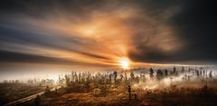 Loureiro (Noel F.) Tags: sony a7r a7rii ii voigtlander nokton 50 12 vm teo loureiro lampai mencer sunrise neboa mist fog galiza galicia
