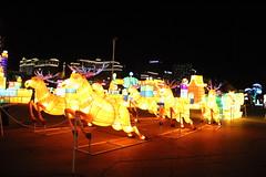 IMG_7455 (hauntletmedia) Tags: lantern lanternfestival lanterns holidaylights christmaslights christmaslanterns holidaylanterns lightdisplays riolasvegas lasvegas lasvegasholiday lasvegaschristmas familyfriendly familyfun christmas holidays santa datenight