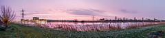 DSCF2601.jpg (amsfrank) Tags: morning winter ijburg amsterdam purple