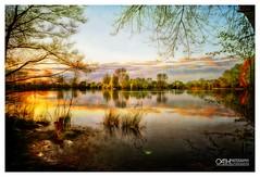 Approaching Sunset (OATH Photography by Alison Richards) Tags: landscape waterlandscape pond naturereserve creativephotography landscapephotography artphotography stchadswater derbyshire englandunitedkingdom exoticimage awardtree