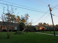 P9190751 (photos-by-sherm) Tags: hurricane florence recovery trees debris chain saws cutting wilmington nc north carolina coast fall