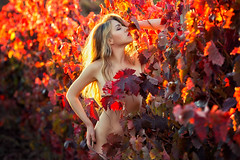 Ania López (Pablo Cañas) Tags: anialópez model modeling modelingfashion modelo sensual sexy sensuality sensualidad colour color viñedos autumn sensualart nude artnude woman