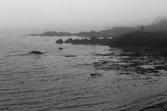 Foggy Rock Walk (peterkelly) Tags: bw canon 6d europe iceland gadventures bestoficeland bakkagerði borgarfjörðureystri shoreline shore coast coastline northatlanticocean harbour harbor water rock rocky man walking fog foggy