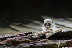 New blog post, again in the french Alps :) (EatMyBones) Tags: figurine miniature poseskeleton rement skeleton toy toyphotography