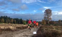 haarlerbergloop 10 km (38)