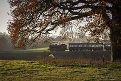 Autumn Steam at Arley (Philip Moore Photography) Tags: 7714 steam locomotive train steamlocomotive railway panniertank severnvalleyrailway landscape autumn arley worcestershire