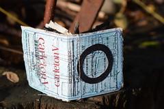 tiny book (Danny W. Mansmith) Tags: artistbook handmade oneofakind originalart dannymansmith wwwdannymansmithetsycom reuse sewingpaper burienwashington details magic