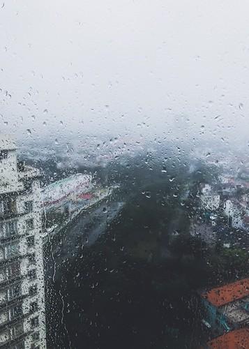Typhoon Usagi in D7