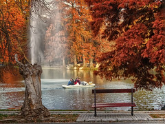 Do not believe what you see (Luana 0201) Tags: autumn bench water red november paek boat