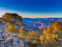 Grand Canyon (Oliver Weihrauch) Tags: grandcanyon sunrise zugrocker bmgforlife wanderlust picoftheday arizonavisit grandcanyonnps fernweh zugrocken adventureculture usnationalpark arizona southrim travelforlife lightroom nationalparklife
