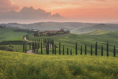 The Rolling Hills of Tuscany (Iurie Belegurschi www.iceland-photo-tours.com) Tags: tuscany adventure beautiful daytours dreamscape earth enchanting fineart fineartlandscape fineartphotography fineartphotos finearticeland guidedphotographyworkshops guidedphotographytour guidedtoursiceland guidedtoursiniceland hills hill icelandphototours iuriebelegurschi iceland icelandic icelanders icelandphotographyworkshops icelandphotographytrip icelandphotoworkshops sky landscape landscapephotography landscapephoto landscapes landscapephotos mountain nature outdoor outdoors phototours phototour photographyiniceland photographyworkshopsiniceland tranquil summer serene sunrise sunset tours travel travelphotography undulating trees tree view valley vegetation workshop workshops italy italian europe european winery vineyard grass fog houses