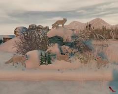 ♥♥341♥♥ >> Tm Creation << (LadyofSin) Tags: tm creation sl winter