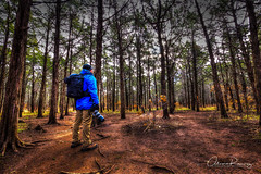 It's ok to get lost once in a while, sometimes getting lost is how we find ourselves... (Al_Ram) Tags: hdr hdrlovers canonshooter canon6d canon70200mm canon1635 lowepro forest lost walk nature naturalesa