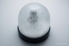 Snowtrooper Globe