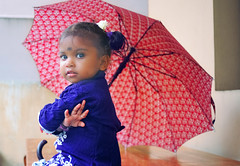 Indian baby girl under a large umbrella during the monsoon season (Nithi clicks) Tags: model baby cute teen
