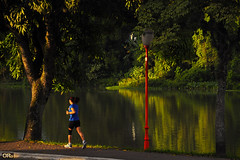 Running along the river (Otacílio Rodrigues) Tags: rio river água water reflexos reflections natureza nature árvores trees mulher woman correndo running jogging corrida poste lamppost vegetação vegetation streetphoto urban resende brasil oro