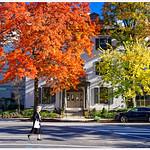 Autumn in DC thumbnail