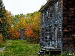 ... (Jean S..) Tags: house stairs balcony trees autumn colors village rural fall grass path windows door wood