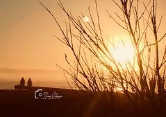 End Of Long Summer 2018 (#Sunset Hunter#) Tags: sunset ventura venturacounty nature visualarts hallmarkmoment photooftheday southerncalifornia california relaxing mediation beach sand vision capture sunsetlovers landscape landscapephotography naturephotography canon3dmarkiii sunsethunter cloudporn amazingsky beachlife