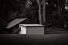 (Elton Pelser) Tags: bw blackandwhite nikond3400photography cabin cottage dark noir darksepia shadows