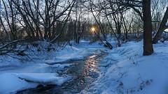 White Wood (Luna y Valencia) Tags: whitewood novavcelnice repubblicaceca czechrepublic sunset puestadesol southbohemia