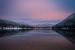 Reflet sur lac vosgiens (Manonlemagnion) Tags: eau lac vosges nature paysage matin neige froid hiver reflets nikond810 1635mmf4