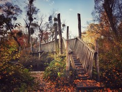 The bridge to Terabithia (undefinable moods) Tags: naturaleza nature natur paysage landschaft landscape woods wald forest autumn fall season bridge brücke pont puente trees bäume arbres arboles leaves blätter colours farben path way camino naturephotography painting outside countryside wilderness