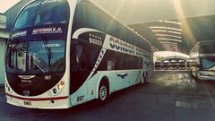 Cóndor Estrella (ffedericoivan) Tags: cóndorestrella bahíablanca bus 897 metalsur especial