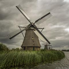 Les moulins de Kinderdijk (musette thierry) Tags: mill moulin kinderdijk holande nederland paysbas europe musette thierry d800 nikon falowme carre nikkor 28300mm