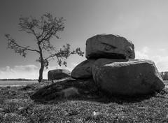 Dolmen bei Rerik (3) (Teelicht) Tags: deutschland dolmen germany grab grossteingrab meckpomm mecklenburgvorpommern grave