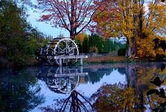 Wasserrad an der Regnitz (karstenzschache) Tags: herbst wasserrad wasser water spiegelung reflection autumn deutschland germany franken