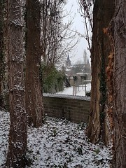 Wow, the very ❄ first snow ❄ of the year in my village ❄❄❄ (Sonia ROOSEN) Tags: 2019 belgium winter