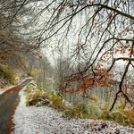 verso l'inverno ... thumbnail