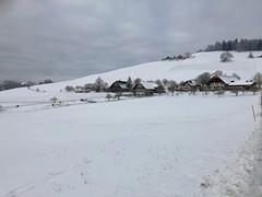 Winter 2019: Enetbach Biglen (Martinus VI) Tags: winter winterlandschaft hivers schnee snow nieve neige emmental kanton canton de bern berne berna berner bernese schweiz suisse suiza switzerland svizzera swiss y190112 martinus6 martinus6xy martinus martinusvi