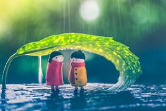 Under the rain (Ro Cafe) Tags: ddproject52 edge80 lensbaby outdoors sonya7iii toys underneath bokeh garden leaf macroconverter miniatures rain water week5 winter