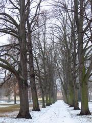Schlossgarten Arn (germancute) Tags: arnstadt
