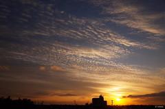 Today's Sunset 20190119 (HAMA-ANNEX) Tags: gr sunset dusk