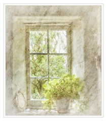 ANOTHER WINDOW IN ORKNEY (Stan Farrow Photography) Tags: orkney window blur texture light highkey stan farrow creative geranium flower